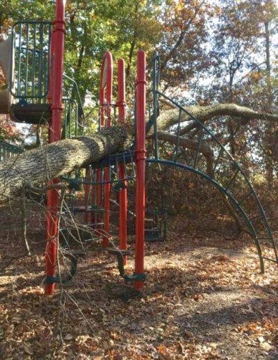 falling tree dmg
